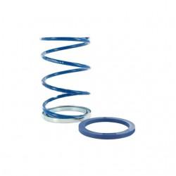 Mola de embreagem POLINI Minarelli horizontal/vertical EVO-Slider